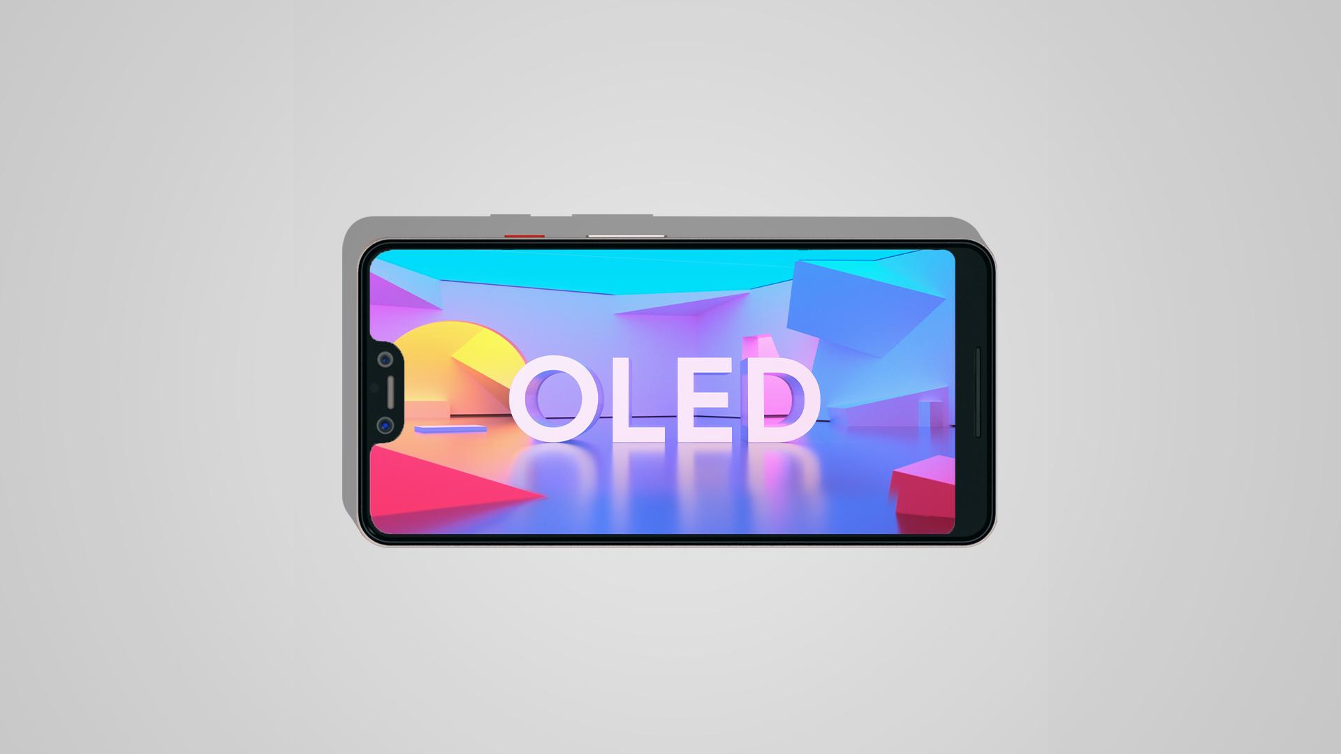 Google Pixel 3 OLED Frames (14)